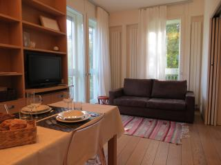Luxury, cosy nest in downtown Milan - Milan vacation rentals