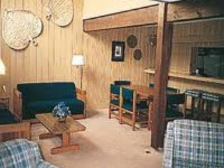 Bryce Resort (VA) 2 hrs from DC - News Years week - Basye vacation rentals