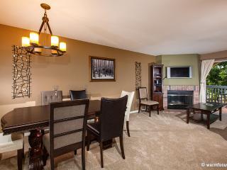 1BR/1BA Luxury Fully Furnished , Long & Short term - La Jolla vacation rentals