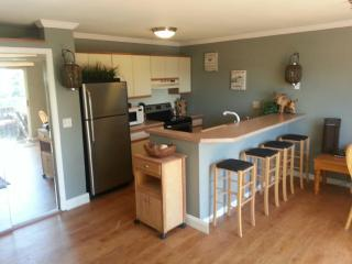Kitchenette - Lake Winnipesaukee Condo Rental- Paugus Bay - Gilford - rentals