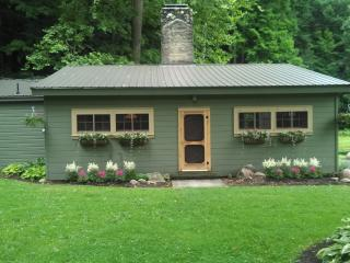 Hidden Valley Cabin 60 Acres/Pond/Creek/Waterfalls - Wooster vacation rentals