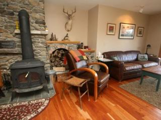 Charming Stowe vacation House with Internet Access - Stowe vacation rentals
