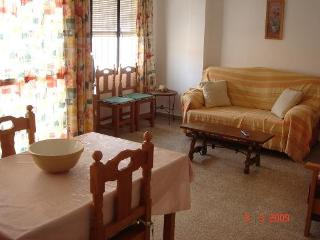 Apartment Nerja 3 bedrooms. 700m from the beach. - Nerja vacation rentals