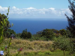 Secluded get away up- country Big Island of Hawaii - Honokaa vacation rentals