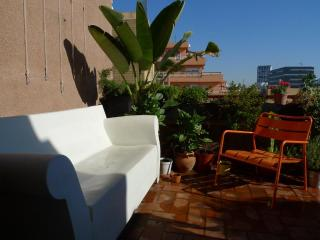Central Beachside terrace - Barcelona vacation rentals