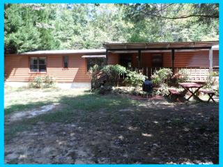 Country Cottage - Lincolnton vacation rentals