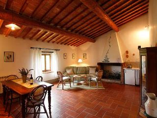 VERDE cozy apartment in country house with  pool - San Casciano in Val di Pesa vacation rentals