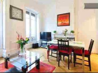 appartement centre lyon dans le plus chic quartier - Lyon vacation rentals