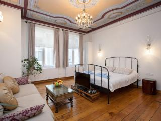 EVE   1 Bed Apartment near GALATA! - Istanbul vacation rentals