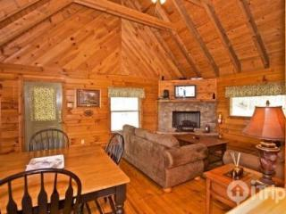Townsend Cabin #5  Blueberry Hill - Townsend vacation rentals