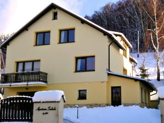 Apartment Svoboda (luxury in the Giant mountains) - Svoboda nad Upou vacation rentals