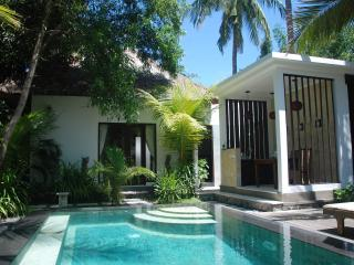 Paradise beachfront villa with ocean view - Singaraja vacation rentals