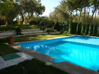 Nice Villa with Television and Microwave - Mancha Real vacation rentals