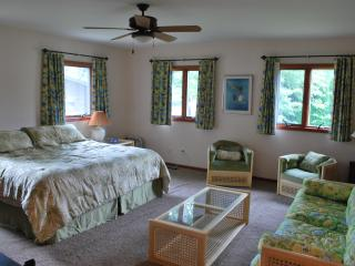 Huge Lakefront 4BR House with Private Dock - Southwest Michigan vacation rentals