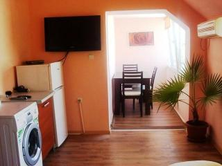 Luxury 2 rooms apartment to let in Bulgaria centre Burgas town - Plovdiv vacation rentals
