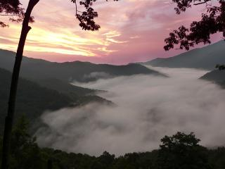 The Alpine House--4 Seasons Cabin/Awesome View! - Maggie Valley vacation rentals