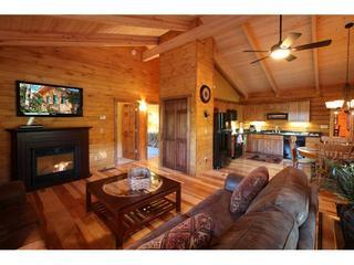 1st Livingroom/Kitchen. Couch opens to a queen size bed. - Catskill Region Vacation Log Home Rental - Margaretville - rentals
