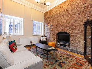Galata  - Best Location and Design - Istanbul vacation rentals