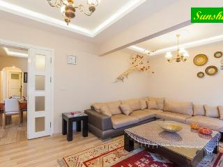 Sunshine, Comfort in the Old City - Istanbul & Marmara vacation rentals