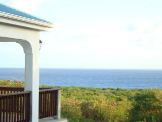 Special Winter rates with an oceanview! - Christiansted vacation rentals