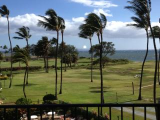 Stunning Ocean View 2/2 Affordable! - Kihei vacation rentals