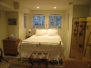 Spacious studio near Metro, private entrance, kitchen, foldout sofa - Washington DC vacation rentals