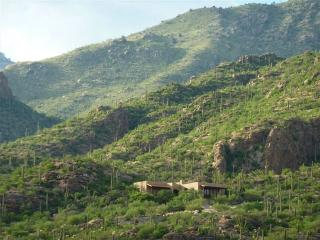 Mountain Estate Ventana Canyon - Guest Membership! - Tucson vacation rentals