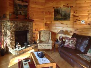 Emerald Forest Gatlinburg 10 minutes from downtown - Gatlinburg vacation rentals