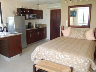 Oceanfront in Hotel Zone- extra cozy and super cheap - Cancun vacation rentals