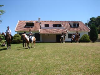 "Stay in a ""Quinta"" and enjoy local life... - Santo da Serra vacation rentals"