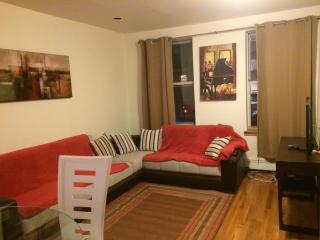 AMAZING 3 BEDROOM APARTMENT - New York City vacation rentals