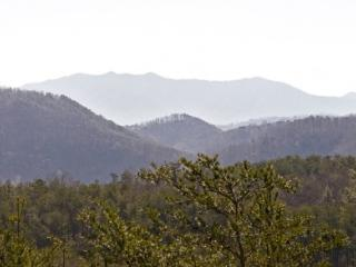ALL ABOUT THE VIEW - Sevierville vacation rentals