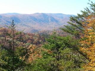 HILLBILLY HILTON - Pigeon Forge vacation rentals