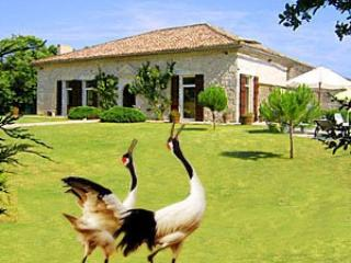 Historic Villa 4 bedrooms with pool SW  France - Tarn-et-Garonne vacation rentals