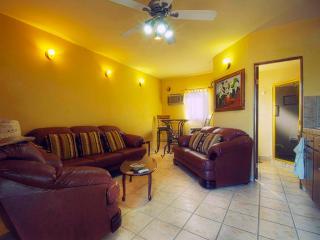 Comfortable Executive Downtown 1-Bedroom Condo - Cabo San Lucas vacation rentals