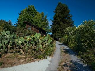 Sonoma Celtic Cottage - Sebastopol vacation rentals