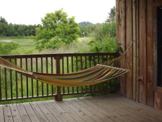 Asheville area - rustic with modern conveniences - Weaverville vacation rentals