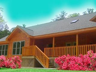 Mountain Cove - Image 1 - Gatlinburg - rentals