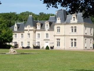 The Château de Jalnay, a very romantic and nice place to be ,south of the Loire river - Moncontour vacation rentals