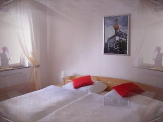 Our  3 Star (DTV) Apartment is on the ground floor - Marbach am Neckar vacation rentals