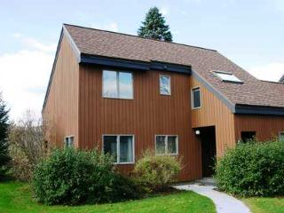 Stonybrook Condo 19 - Stowe vacation rentals