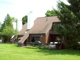 Wonderful Condo with Deck and Internet Access - Stowe vacation rentals
