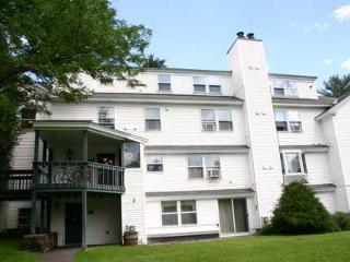 The Lodge Condo 6 - Stowe Area vacation rentals