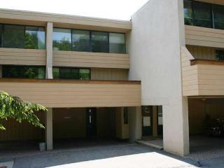Notchbrook Condo 14ab - Stowe vacation rentals