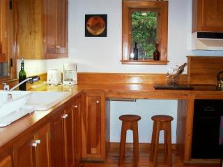 Bright 2 bedroom House in Hyde Park - Hyde Park vacation rentals