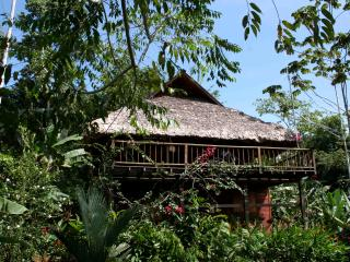 La Ceiba - Jungle Ecohouse Of The Jaguar Rescue Center Foundation - Limon vacation rentals