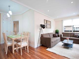 Perfect 3 bedroom San Sebastian - Donostia Apartment with Internet Access - San Sebastian - Donostia vacation rentals