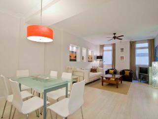 2 bedroom Apartment with Internet Access in San Sebastian - Donostia - San Sebastian - Donostia vacation rentals