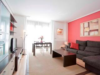 1 bedroom Apartment with Internet Access in San Sebastian - Donostia - San Sebastian - Donostia vacation rentals