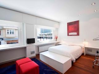 1 bedroom Apartment with Internet Access in San Sebastian - Donostia - San Sebastian - Donostia vacation rentals